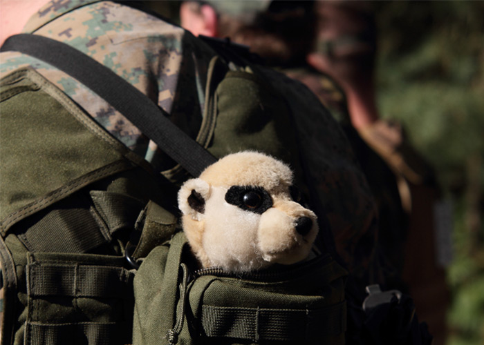 Airsoft & Stuff Toys 01