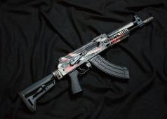 Bunny Custom: AUDI RS6 x AK105 Tactical GBB Airsoft Rifle