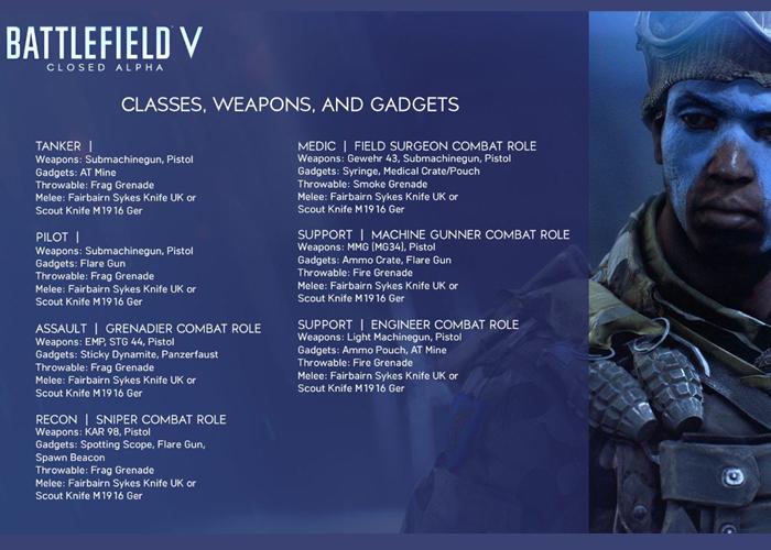 Battlefield 5 Combat Role