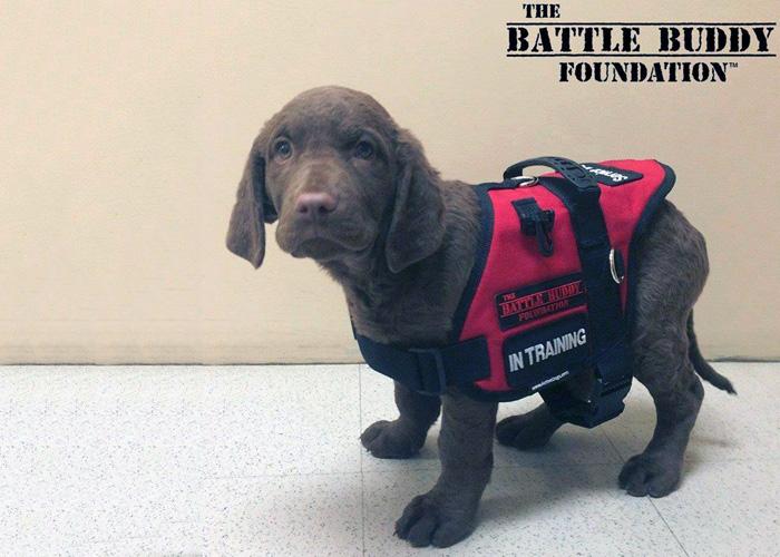 The Battle Buddy Foundation