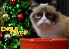 Enola Gaye Christmas 2014