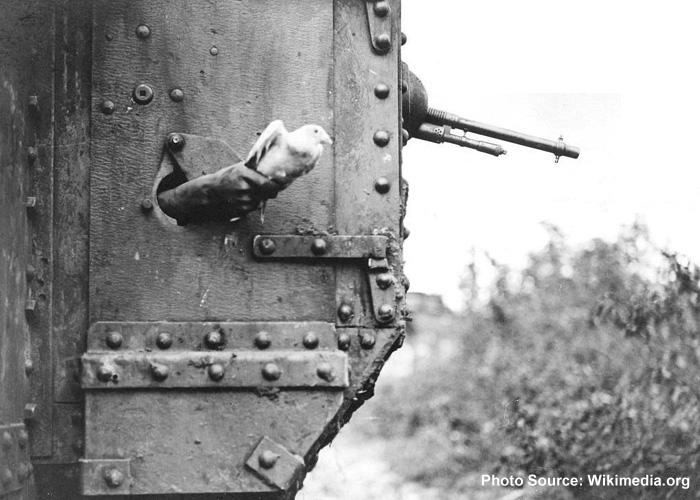 Carrier Pigeon And British Tank in World War 1 (Wikimedia)