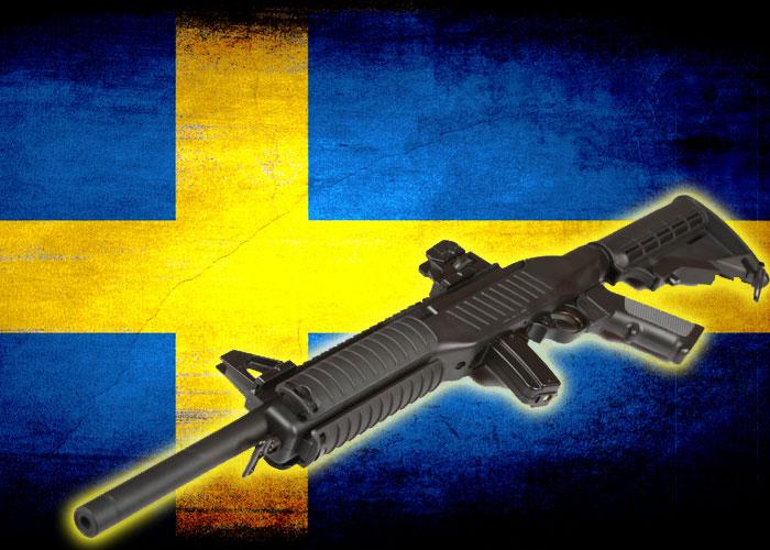 ผลการค้นหารูปภาพสำหรับ gun in sweden